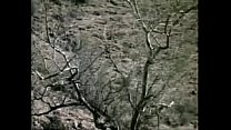 Supervixens (1975) full movie